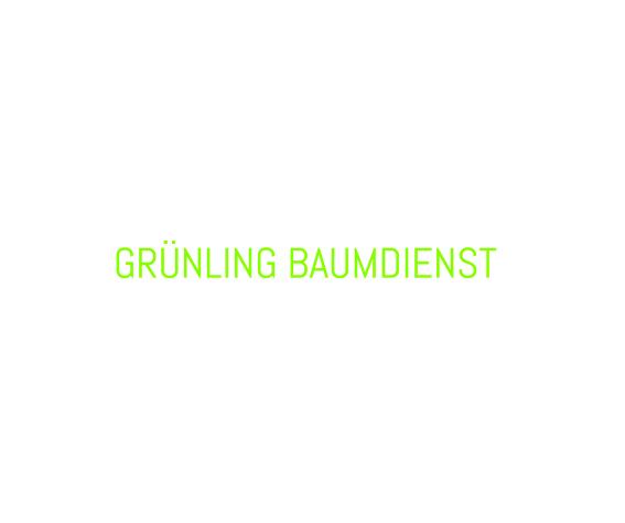 SEO Kampagne – Grünling Baumdienst