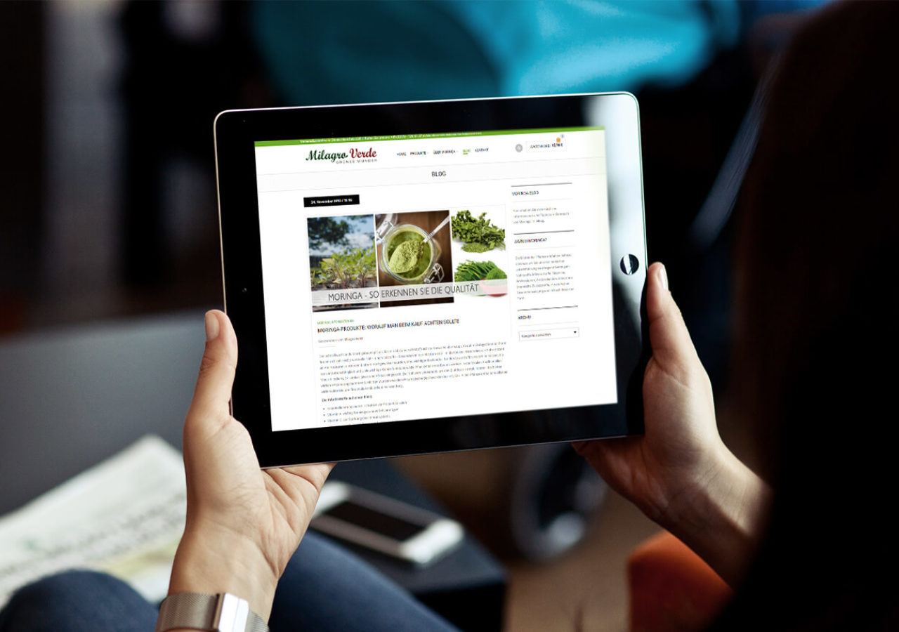 Online-Shop umgesetzt in Wordpress