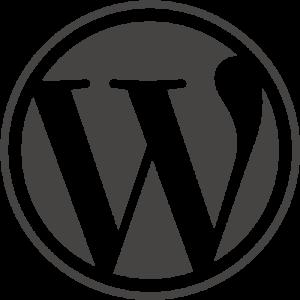 wordpress-designagentur
